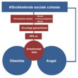 blog 29 Sociale Cohesie -angstmodel voor obesitas